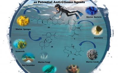 ATLANTIDA investigates marine compounds as potential anti-glioma agents