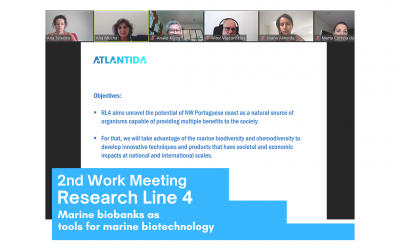 Research Line 4 reunites for its second work meeting on behalf of the ATLANTIDA project